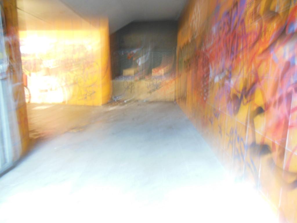 Bilder 9.1.13 010